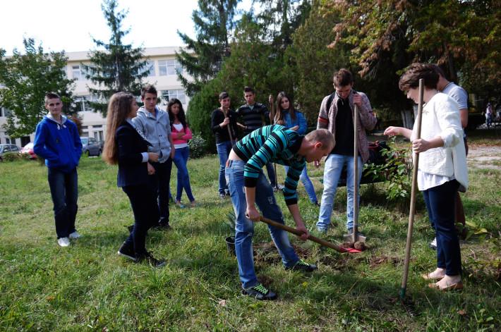 foto: liceulastra.ro