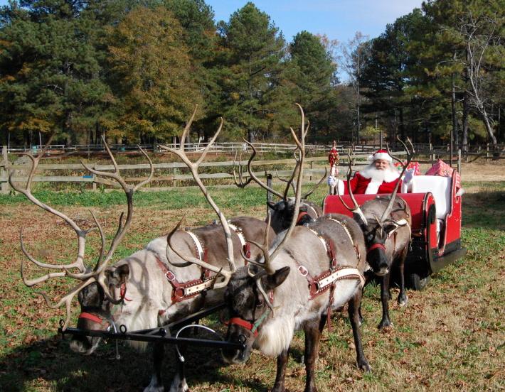 Mos Craciun si renii sai intr-un parc din Atlanta, Foto: barnsleygardensresort.wordpress.com