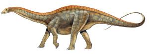 Dinozaurul Dicraeosaurus 5