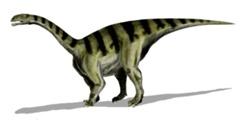 Dinozaurul Sellosaurus
