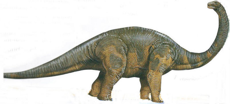 Hypselosaurus, Foto: pixshark.com