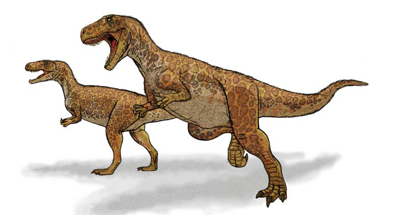 Megalosaurus, Foto: imgarcade.com