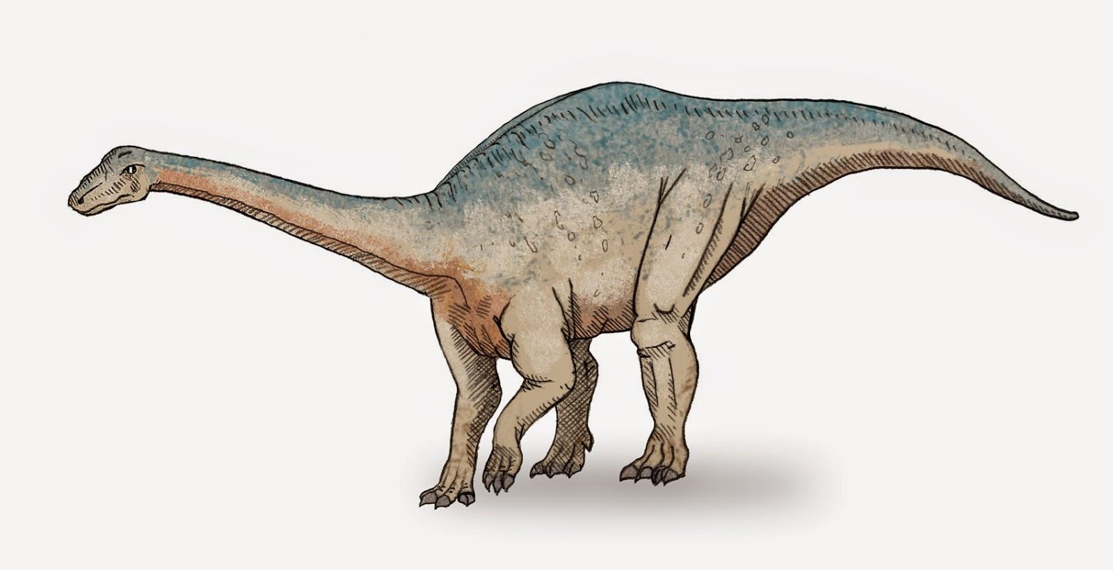 Riojasaurus, Foto: resolviendolaincognita.blogspot.com