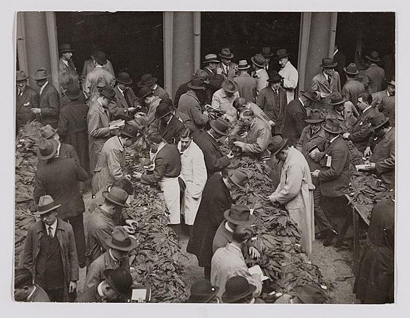 Controlul tutunului in Amsterdam in 1927