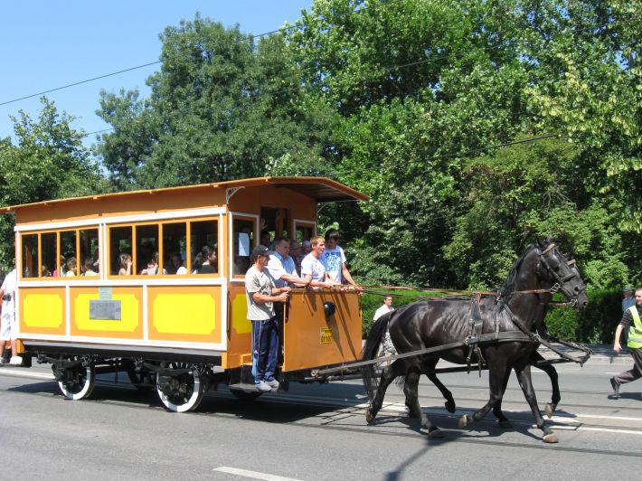 Tramvai cu cai in Timisoara, Foto: commons.wikimedia.org