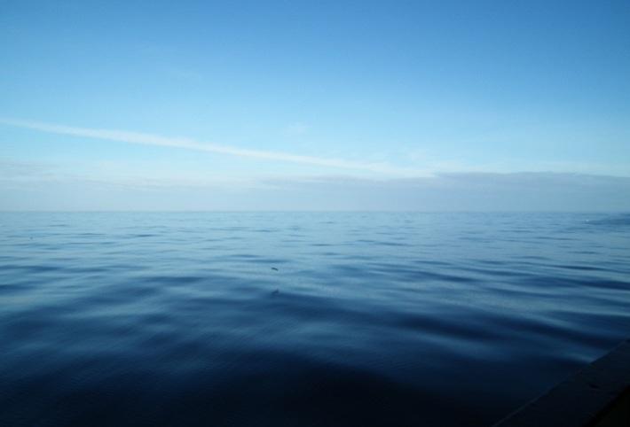 Apa din Oceane, Foto: phytoplanktonic.wordpress.com