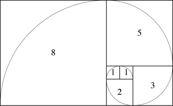 Regula lui Fibonacci , Foto: educateinspirechange.org