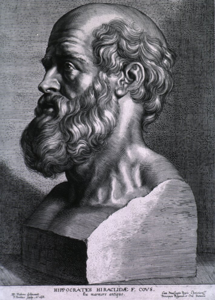 Bustul lui Hippocrate de Peter Paul Rubens, Foto: en.wikipedia.org