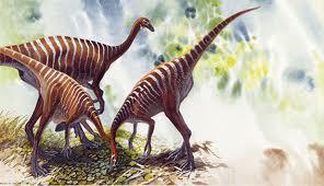 Dinozaurul Dromiceiomimus breviterius