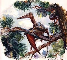 Dinozaurul Pterodactylus antiquus