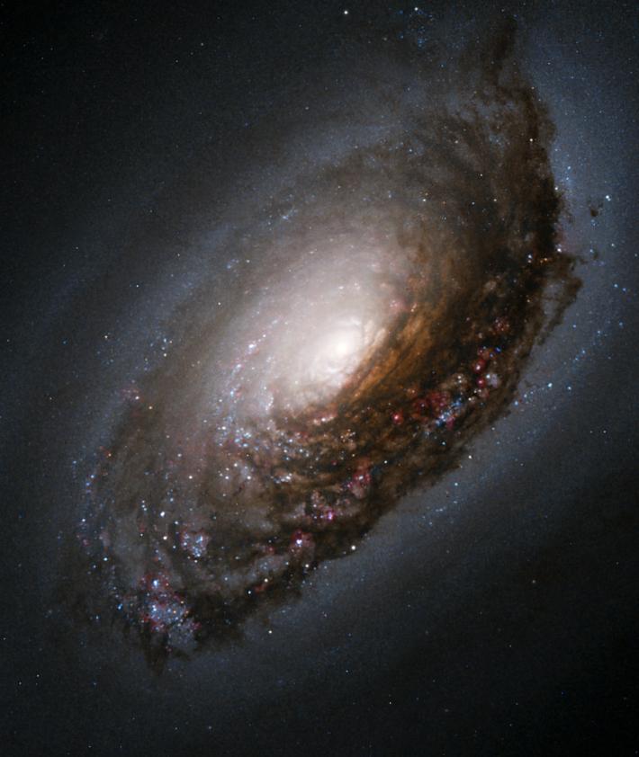 Galaxia Ochiul Negru, Foto: en.wikipedia.org