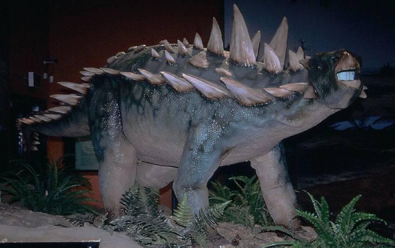 Polacanthus, Foto: gavinrymill.com