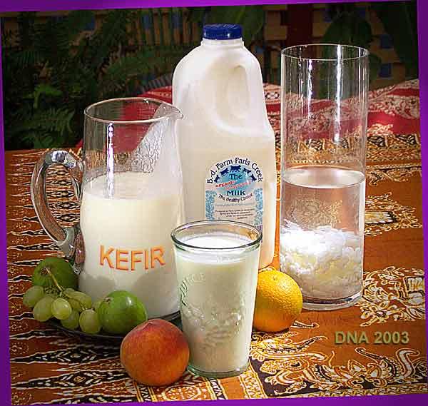 Produse lactate: kefir si culturi lactice, Foto: fibromialgiamelilla.wordpress.com