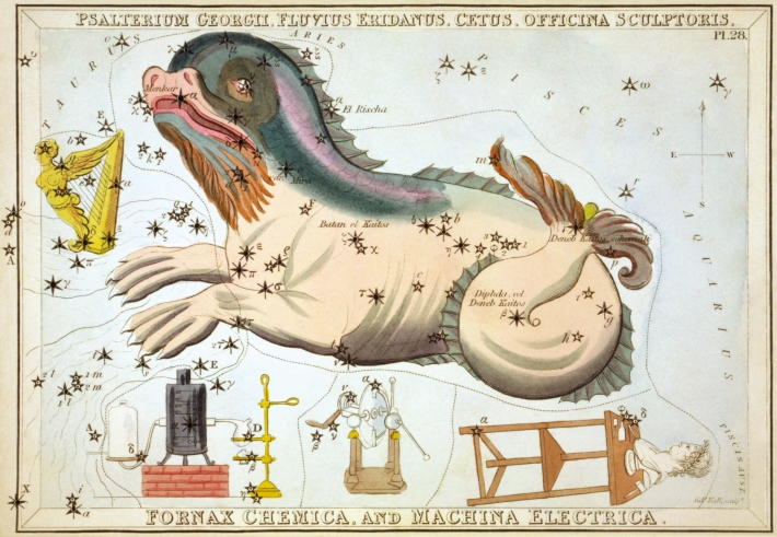 Simbolul Constelatiei Cetus, Foto: en.wikipedia.org
