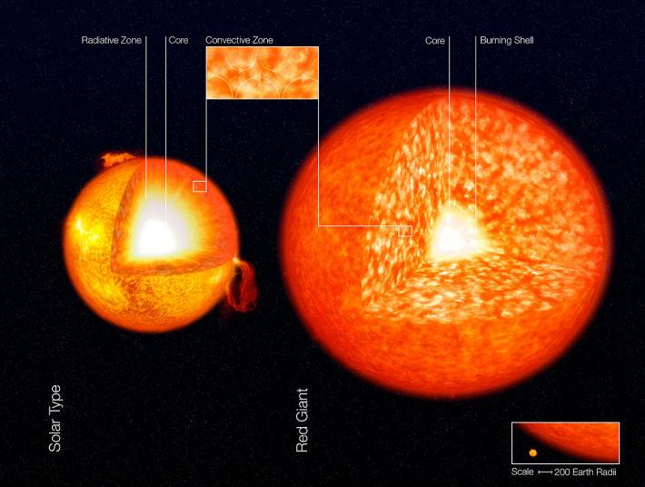 Structura interna a stelelor Soarele vs Stea Gigant, Foto: en.wikipedia.org