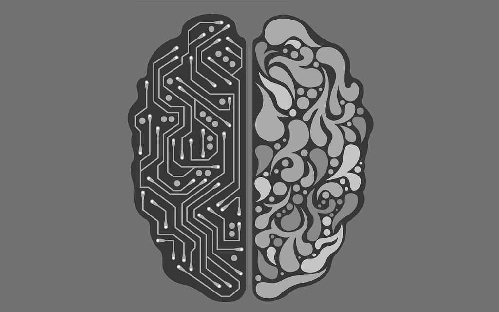situatia creierului