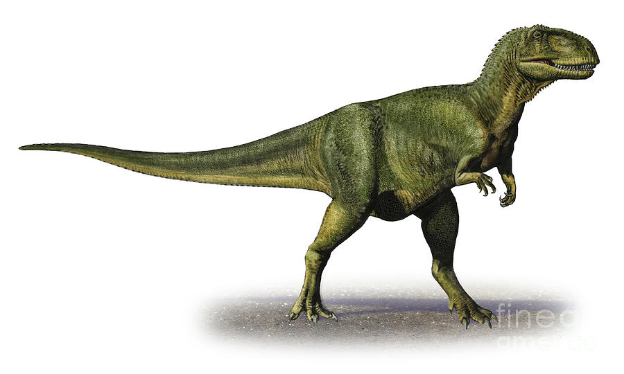 Abelisaurus, Foto: comturaltafloresta.blogspot.com