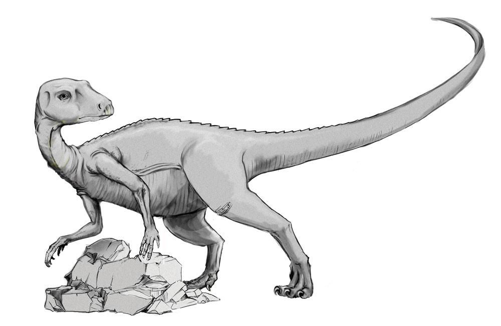 Abrictosaurus, Foto: lidtop.wordpress.com