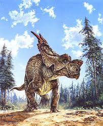 Achelousaurus.jpg