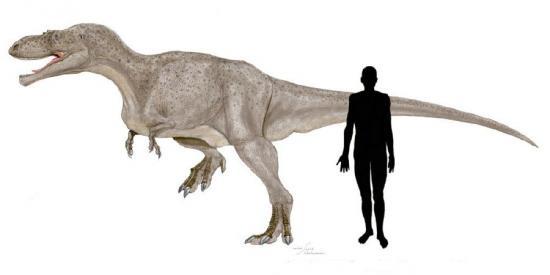 Alectrosaurus, Foto: lesdinodeluna.e-monsite.com