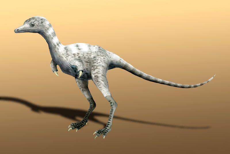 Alvarezsaurus, Foto: oldearth.org