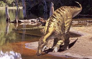 Dinozaurul Anatotitan, Foto: boards.ie
