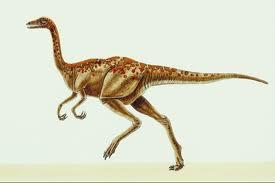 Archaeornithomimus asiaticus
