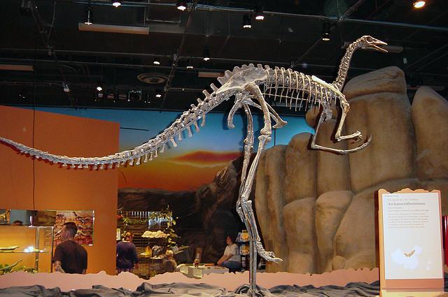 Archaeornithomimus, Foto: angelfire.com