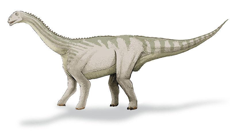 Blikanasaurus, Foto: lj.rossia.org