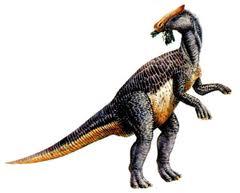 Brachylophosaurus canadensis