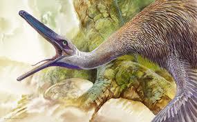 Buitreraptor gonzalezorum 1