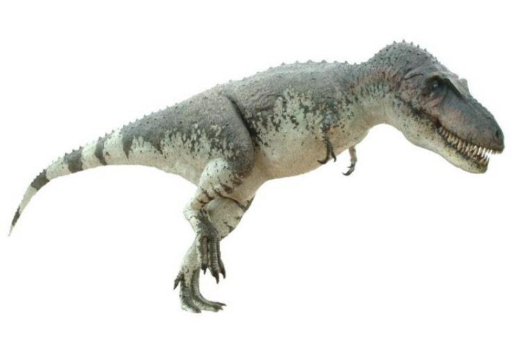 Daspletosaurus, Foto: spanishreplicas.com