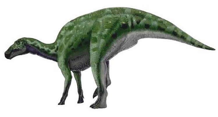 Edmontosaurus, Foto: planetdinosaur.com