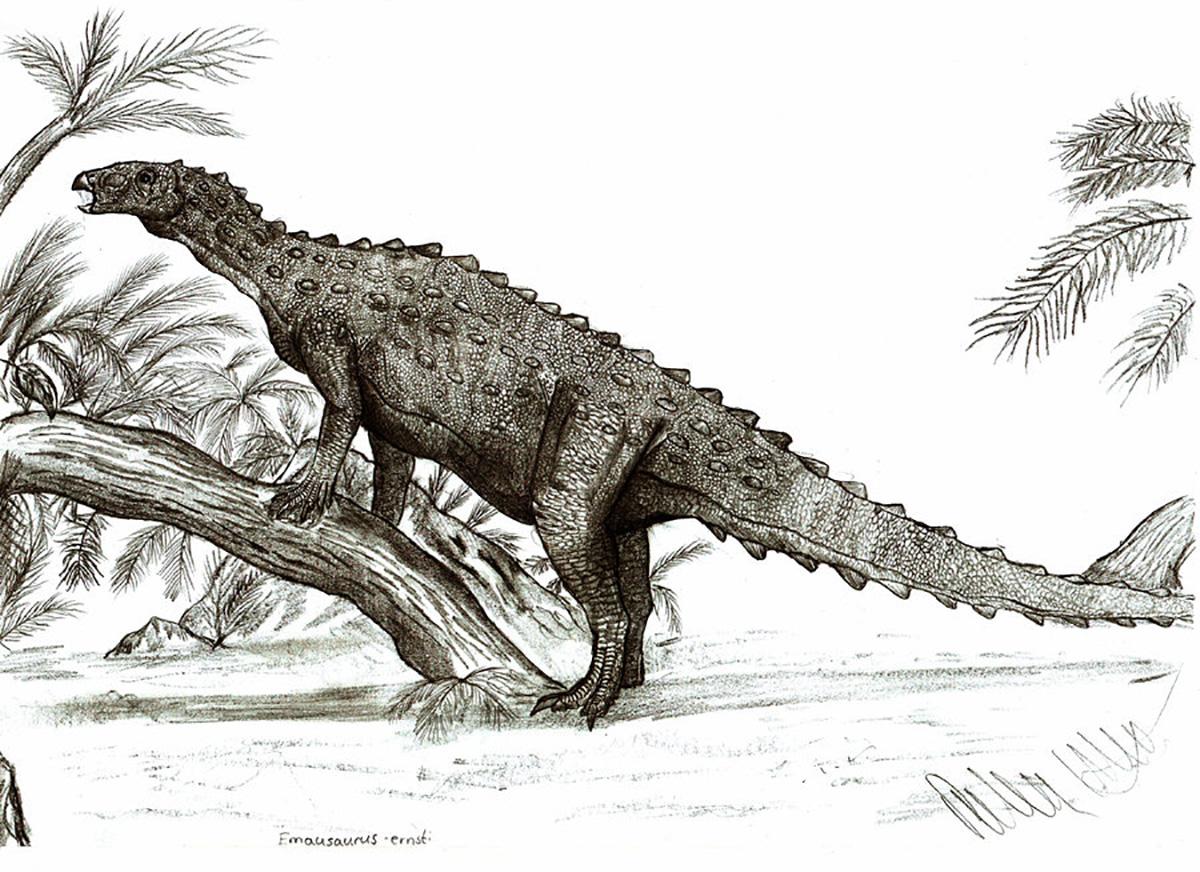 Emausaurus, Foto: dinosaurier-info.de