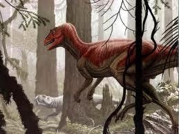 Herrerasaurus ischigualastensis 1