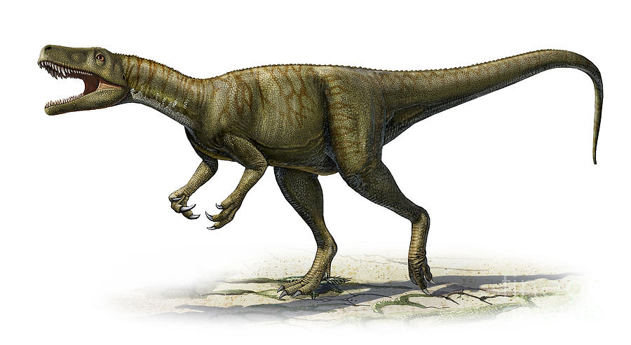 Herrerasaurus, Foto: ztopics.com