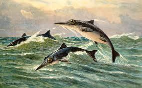 Ichthyosaurus communis 1