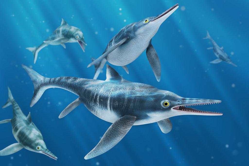 Ichthyosaurus, Foto: foldrajzmagazin.hu