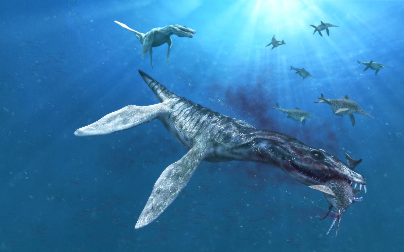 Liopleurodon, Foto: labo80.wordpress.com
