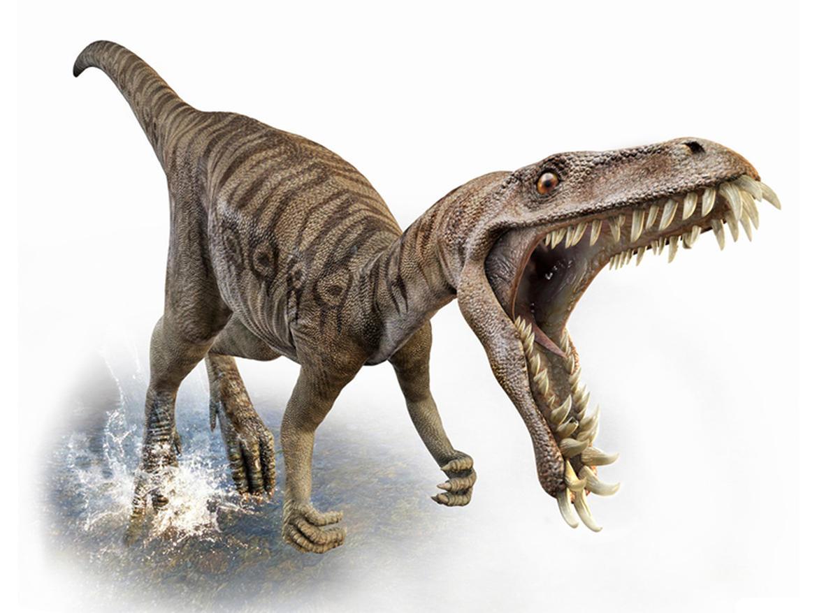 Masiakasaurus, Foto: cnet.com