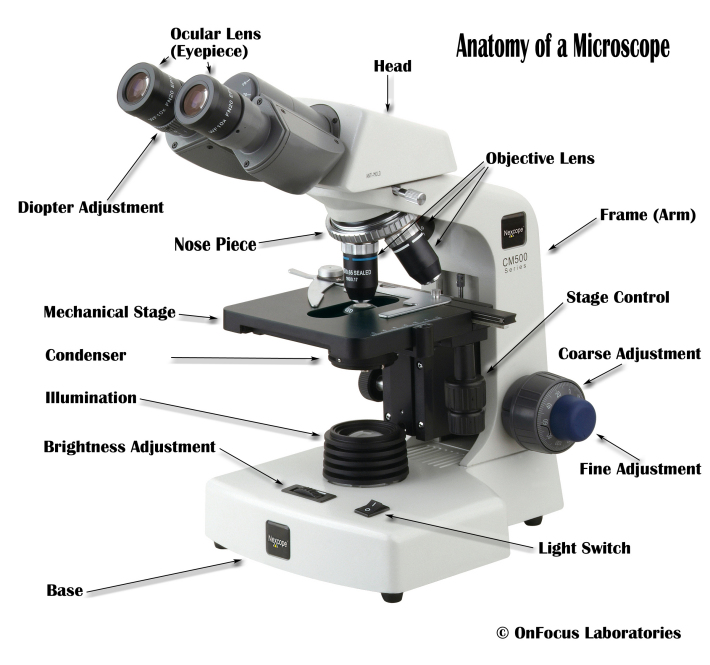 Microscop optical, Foto: microscopetalk.wordpress.com