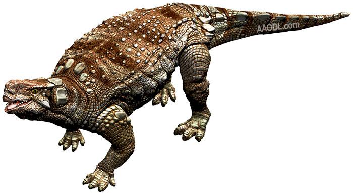 Minmi, Foto: australianageofdinosaurs.com
