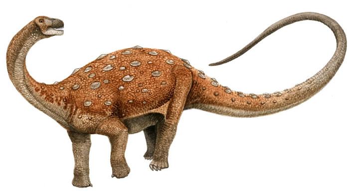 Neuquensaurus, Foto: forum.dinozaury.com