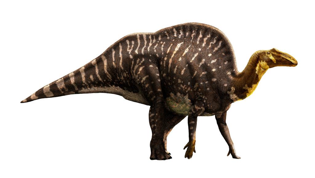 Ouranosaurus, Foto: motorcityblog.blogspot.com