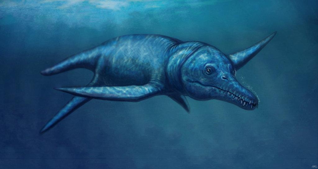 Pliosaurus, Foto: paleofeathers.tumblr.com