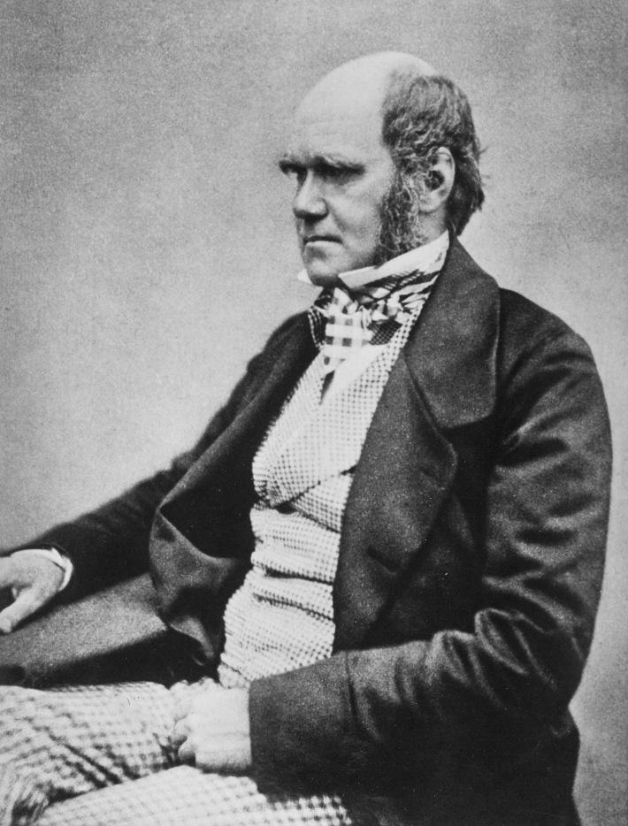 Portretul lui Charles Darwin, Foto: en.wikipedia.org
