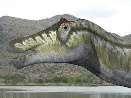 Prosaurolophus maximus
