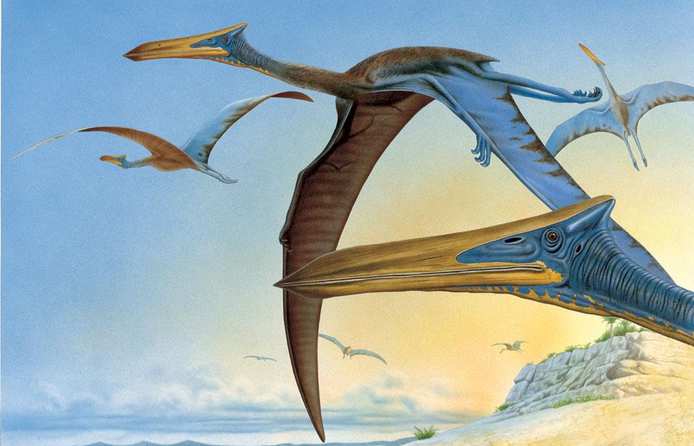 Quetzalcoatlus, Foto: talismancoins.com