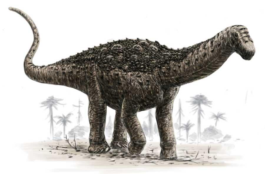Saltasaurus loricatus, Foto: taringa.net