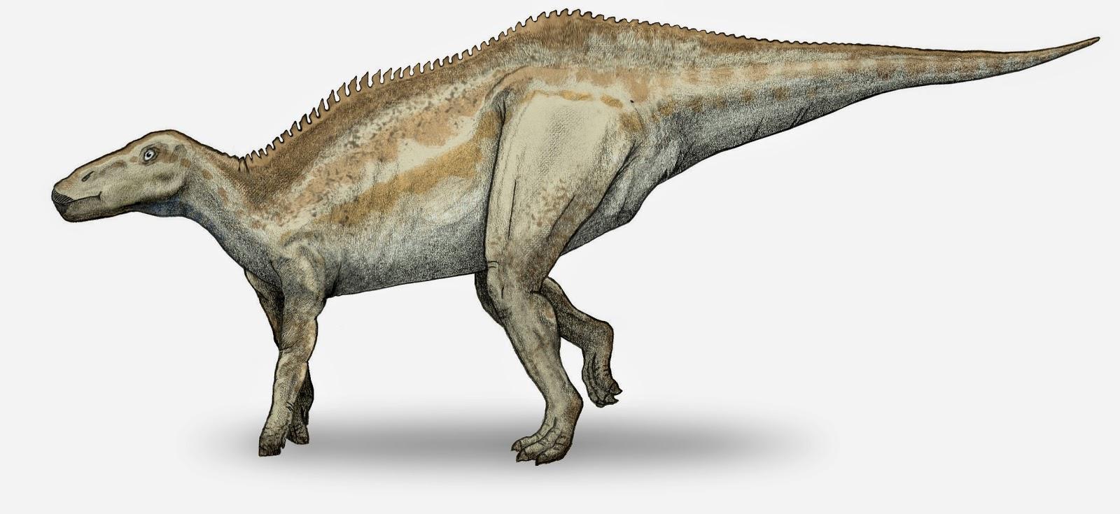 Shantungosaurus, Foto: michael540.blogspot.com